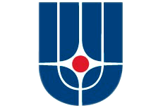 Institute for Theoretical and Experimental Physics logo